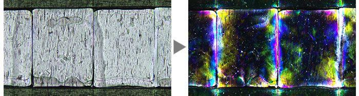 Film (Left: Brightfield / Right: Polarized light)